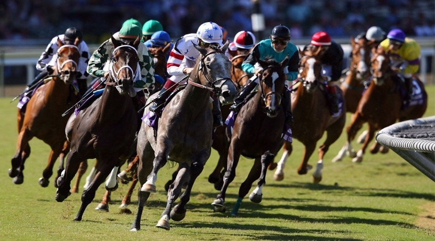 Horse Racing online betting site